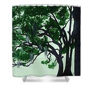 Beautiful Oak Trees Shower Curtain