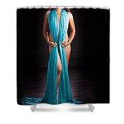Beautiful Oriental Asian Shower Curtain