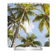 Beautiful Palms Shower Curtain