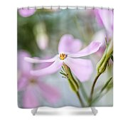 Beautiful Pink Spring Flowers Shower Curtain