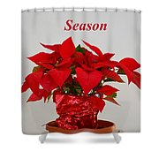 Beautiful Poinsettia Plant - No 2 Shower Curtain