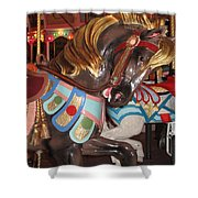 Beautiful Pony On The Happiness Machine Shower Curtain