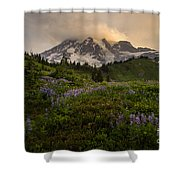 Beautiful Rainier Wildflower Meadows Shower Curtain
