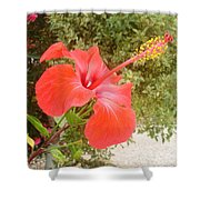 Beautiful Red Hibiscus Flower With Garden Background Shower Curtain