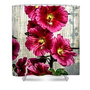 Beautiful Red Hollyhock Shower Curtain by Robert Bales