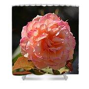 Beautiful Rose Blossom Shower Curtain