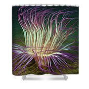 Beautiful Sea Anemone 1 Shower Curtain by Lanjee Chee