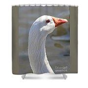 Beautiful White Goose Shower Curtain