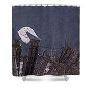 Beautiful Snowy Owl Flying Shower Curtain