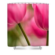 Beautiful Stems Shower Curtain