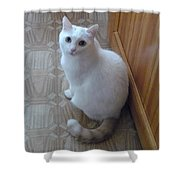 Beautiful Tail Shower Curtain