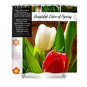 Beautiful Tulips Series 2 Shower Curtain