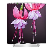 Beautiful Two Shower Curtain