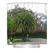 Beautiful Ventura Palm Shower Curtain
