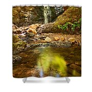 Beautiful View Of Upper Falls Located In Uvas Canyon County Park Forest Reflection Shower Curtain