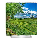 Summer View In Yorkshire Shower Curtain