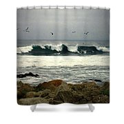 Beautiful Waves On The Monterey Peninsula Shower Curtain