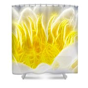 Beautiful White And Yellow Flower - Digital Artwork Shower Curtain