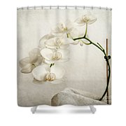 Beautiful White Orchid II Shower Curtain by Hannes Cmarits