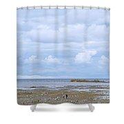 Beautifully Bleak Shower Curtain
