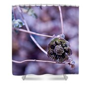 Beauty After Bloom Shower Curtain