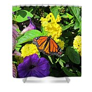Beauty All Around Shower Curtain