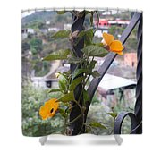 Beauty Among Poverty Shower Curtain
