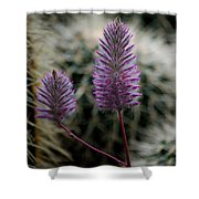 Beauty Among Thorns Shower Curtain