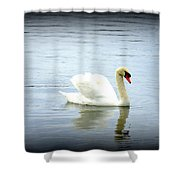 Beauty And Elegance Shower Curtain