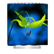 Beauty And Grace 1 Shower Curtain