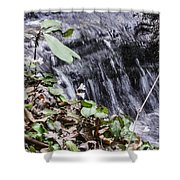 Beauty And The Rapids Shower Curtain