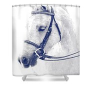 Beauty In A Bridle Shower Curtain