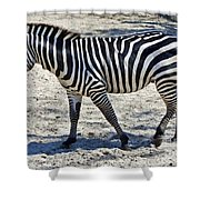 Beauty In Black And White Shower Curtain