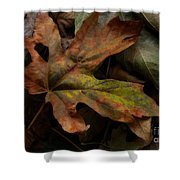 Beauty In Imperfection Shower Curtain