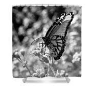 Butterfly Beauty In Nature Shower Curtain