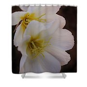 Beauty In The Canyon 2 Shower Curtain