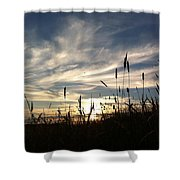 Beauty In The Sky Shower Curtain