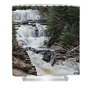 Beauty In The Woods Shower Curtain