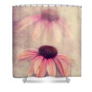 Beauty Of Autumn Shower Curtain