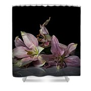 Beauty Of Decaying Lilies Shower Curtain