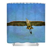Beauty Of Flight Textured Shower Curtain