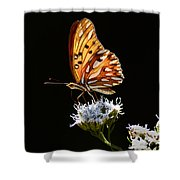 Beauty Of Nature Butterfly Brazil 2 Shower Curtain