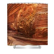 Beauty Of Sandstone Arizona Shower Curtain