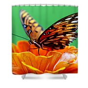 Beauty Of Shannon Shower Curtain