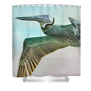 Beauty Of The Pelican Shower Curtain