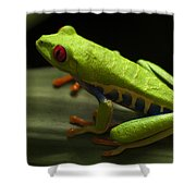 Beauty Of Tree Frogs Costa Rica 2 Shower Curtain