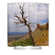 Beauty On High Shower Curtain