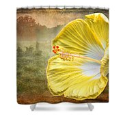 Beauty Served Two Ways Shower Curtain