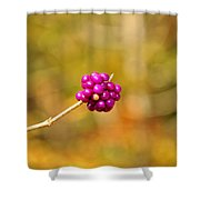 Beautyberry Shower Curtain