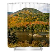 Beaver Pond Shower Curtain